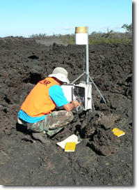 Staff downloading rainfall data from a raingauge at Puhakuloa training area, Big Island.
