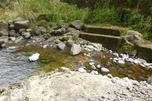 Diversion on Waialeale Stream (West Branch of the North Fork Wailua River)