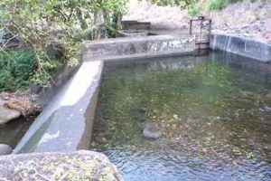 Diversion on Kauaula Stream