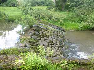 Stream diversion on Kamooloa Stream