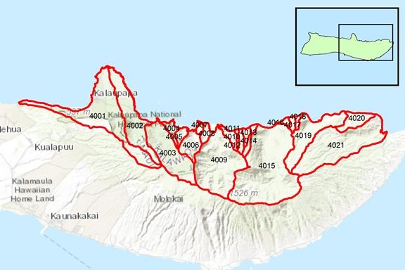 Hālawa Region Surface Water Hydrologic Units
