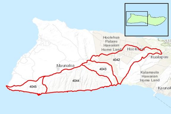 Kaluako'i Region Surface Water Hydrologic Units