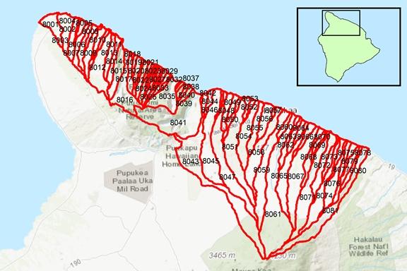 Hāmākua Region Surface Water Hydrologic Units