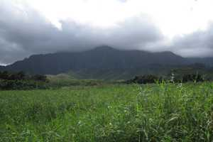 View of He'eia watershed looking mauka