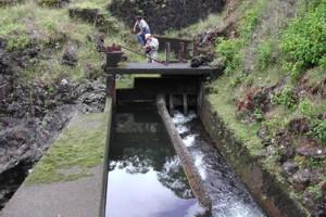 West Wailuaiki Stream Intake