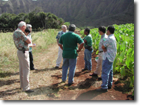 Staff at the Waimanalo Research Station, Oahu, Hawaii.