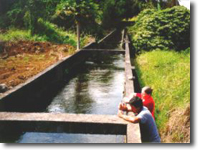 CWRM Staff take water flow readings from the Lower Hamakua Ditch on the Island of Hawaii. The ditch captures water from the wet, northern side of the island and transports the water to various agricultural users along the eastern Hamakua coastline.