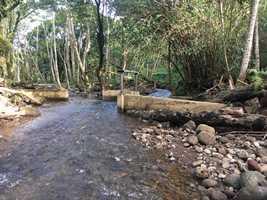 Downstream view of the po'owai (diversion) on Wai'oli Stream