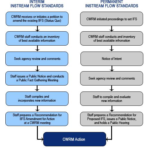 IFS Process