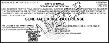 example of GE tax license